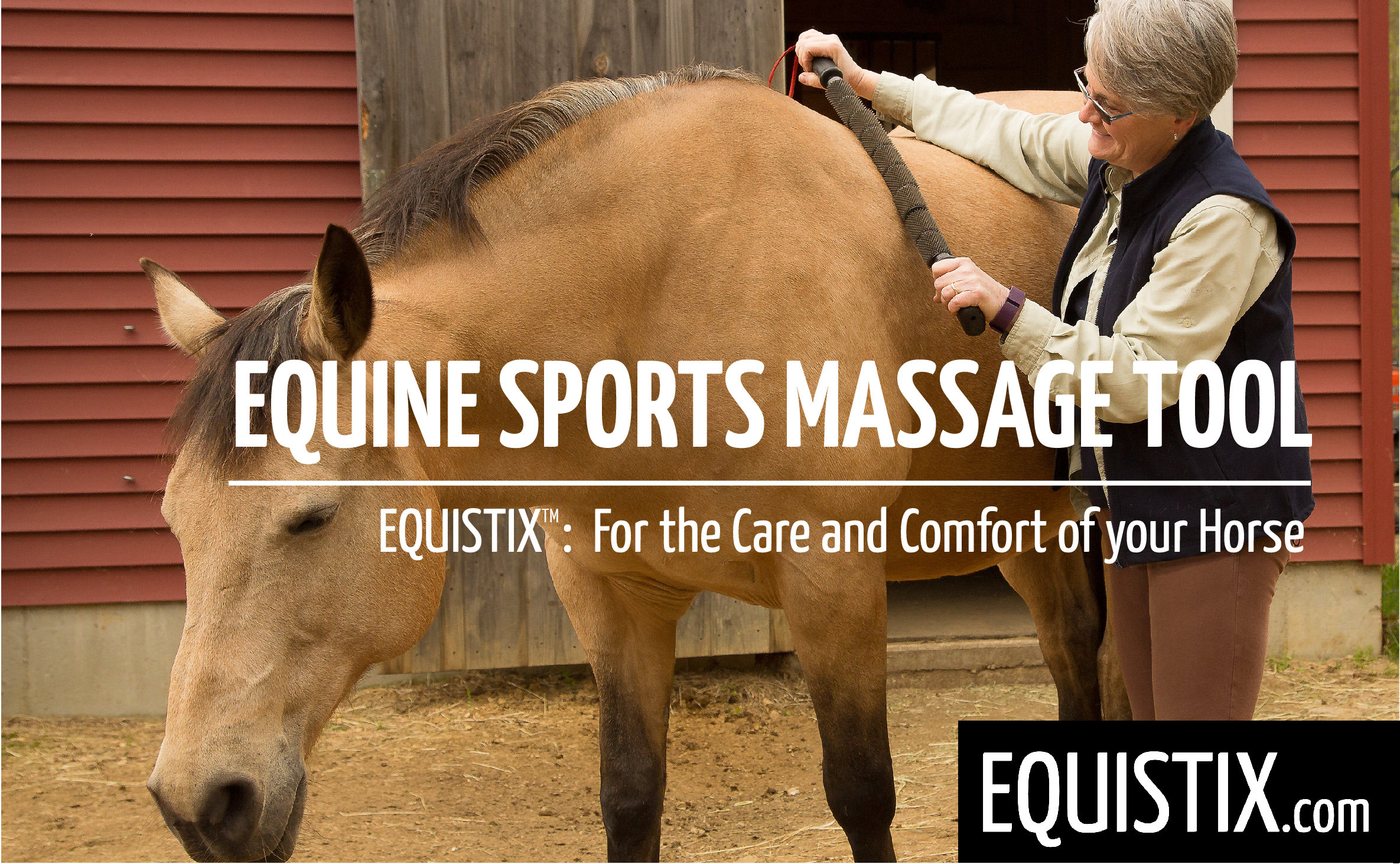 Mini-massages and EQUISTIX demo at BSTRA Fall Benefit Pleasure Ride