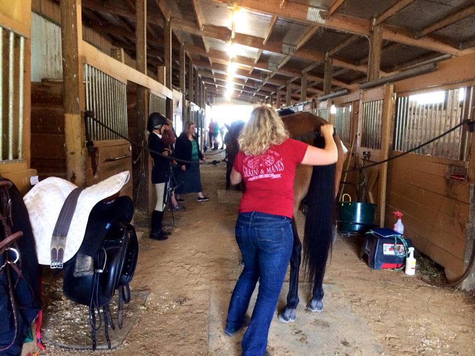 Grains & Manes Farm Equine Massage Therapy uses EQUISTIX