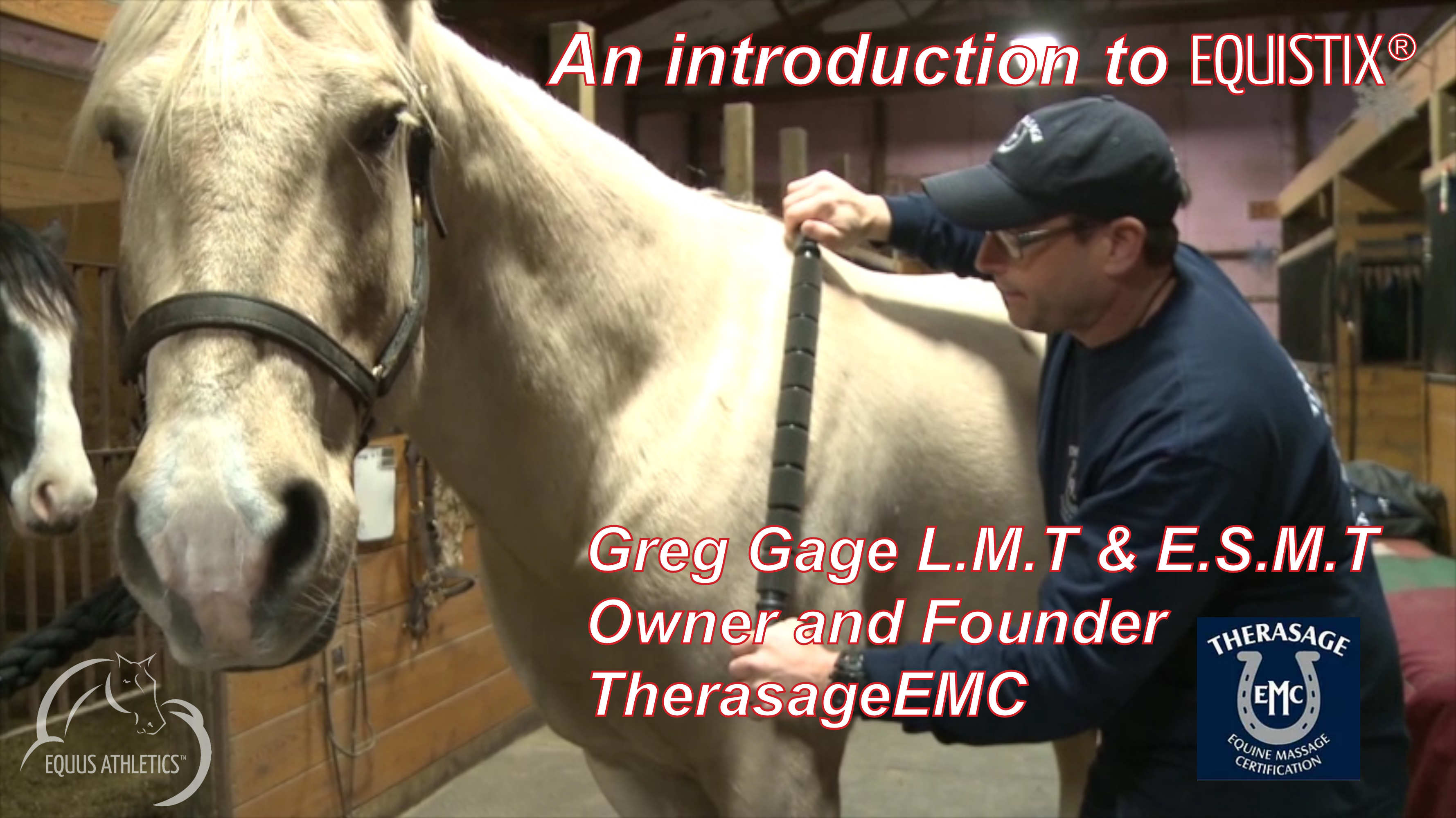 An introduction to EQUISTIX® by the founder of Therasage EMC